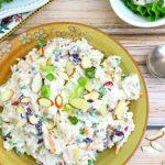 Bela pileća salata